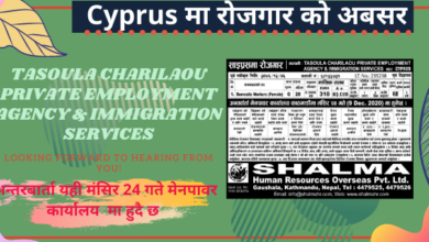 vacancy from cyprus
