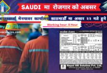 Job Demand in Dammam